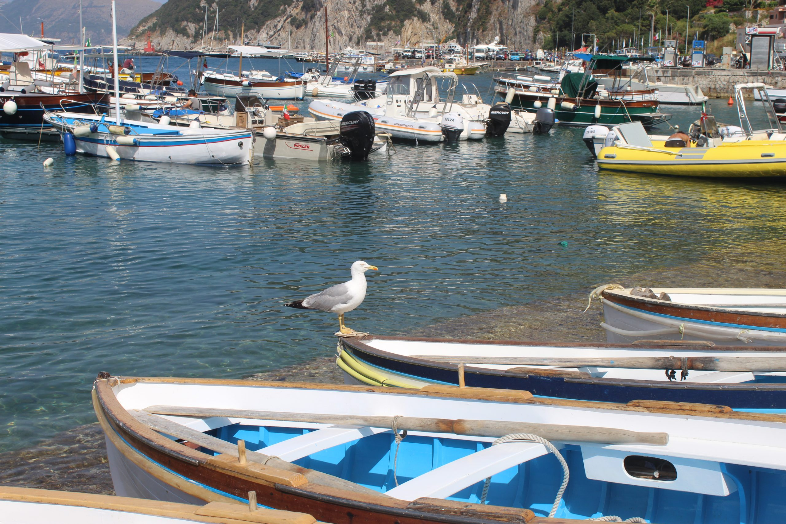Italian Summer Vacation Capri Island Louis Vuitton Bottega Veneta Lookbook Paola Lauretano